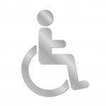 handicap type2